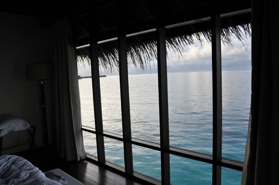 Coco Bodu Hithi: VIEW FROM THE BEDROOM'S WINDOW