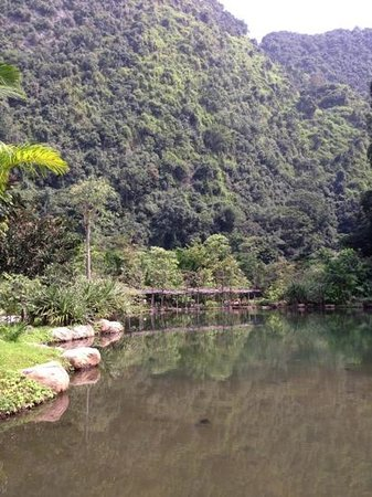 The Banjaran Hotsprings Retreat: Main pond