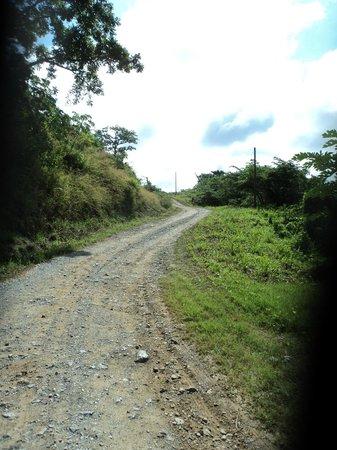 Media Luna Resort & Spa: C'est ca le chemin d'accès privé qui nous emmène à l'hotel sur 1 kilomètre (15 minutes) à 5 km/h