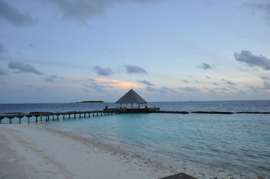 Coco Bodu Hithi: CPBH