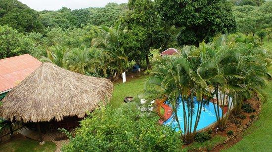 The Colibri Hill Resort : Bar y piscina