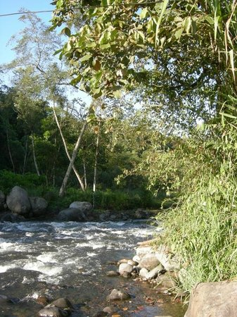 Mindorado: Río Mindo