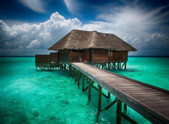 The infinity pool at the quiet zone picture of conrad for Conrad maldives rangali
