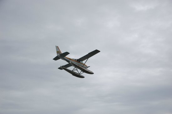 Taupo's Floatplane: Coming in to land