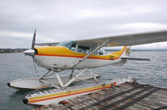 Taupo's Floatplane: The little floatplane before takeoff