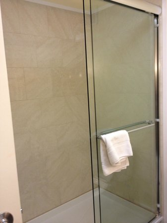 Holiday Inn Express & Suites Dalton: Nice big shower