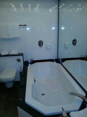 Hotel Müggelsee Berlin: top Badezimmer