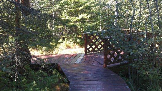 Boise de la Pointe St Gilles: Zen Garden