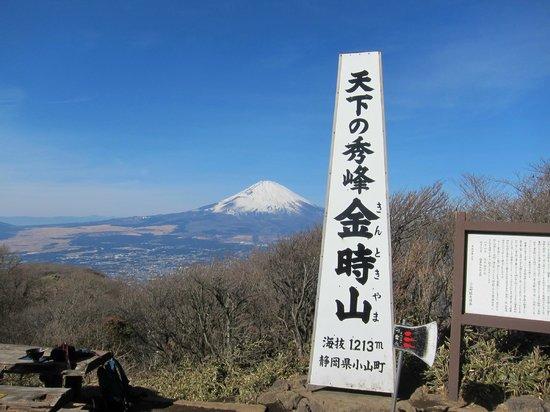 Minamiashigara, Japon : 金時山頂