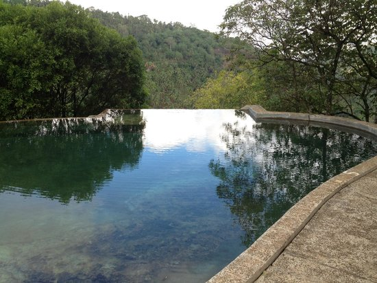 Birds Park Accommodation: a rock pool