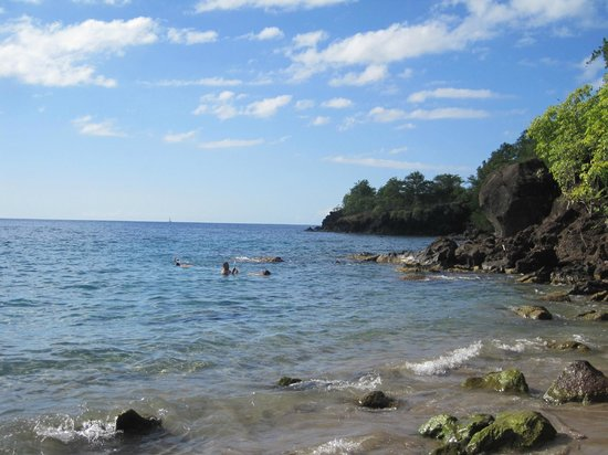 Anse Cochon Beach : Snorkeling area