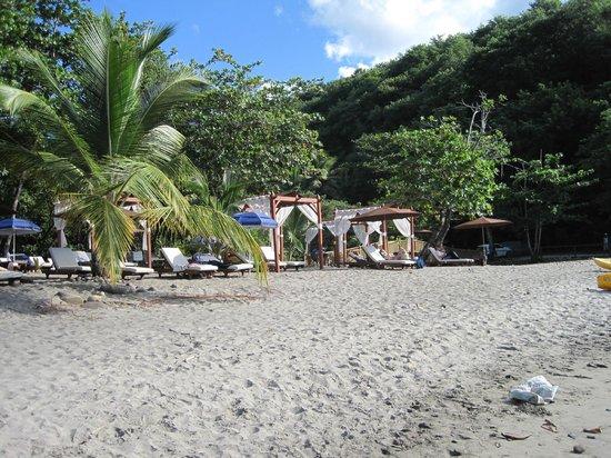 Anse Cochon Beach : resort chairs