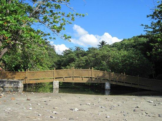 Anse Cochon Beach : bridge