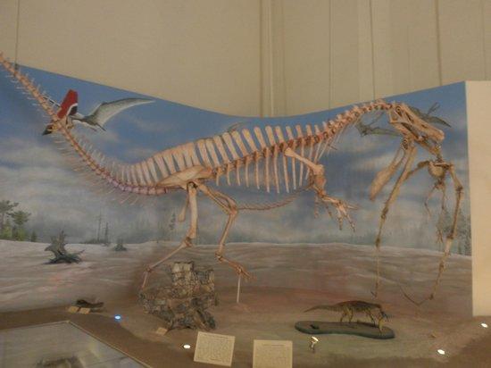 National Museum: Dinos