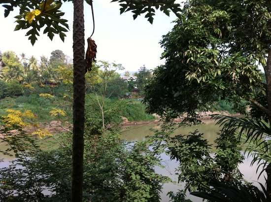 Thongbay Guesthouse: View from river-front bungalow front porch