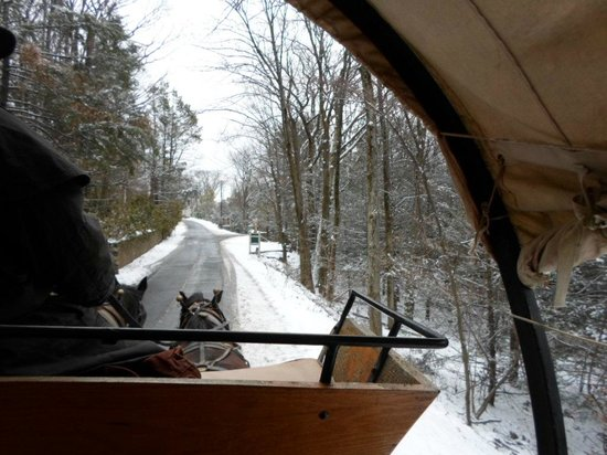Pocono Manor Resort & Spa: Great View From Inside Carriage Ride Xmas Day 2012