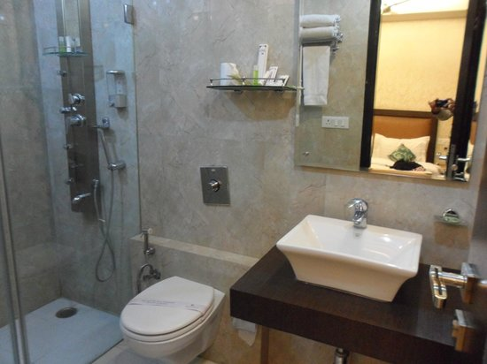 Hotel Kingston Park: bathroom