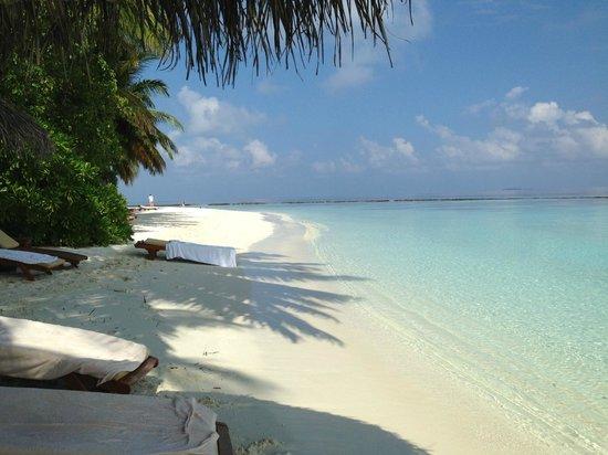 Baros Maldives: perfect beach