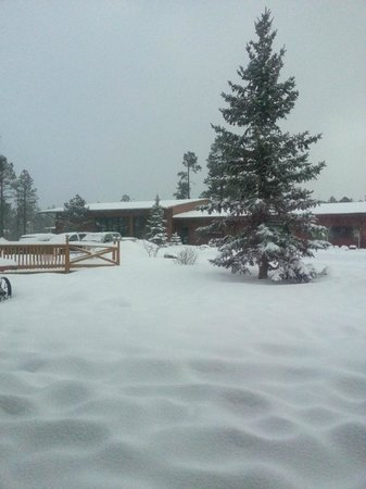 Let it snow! at the roundhouse resort