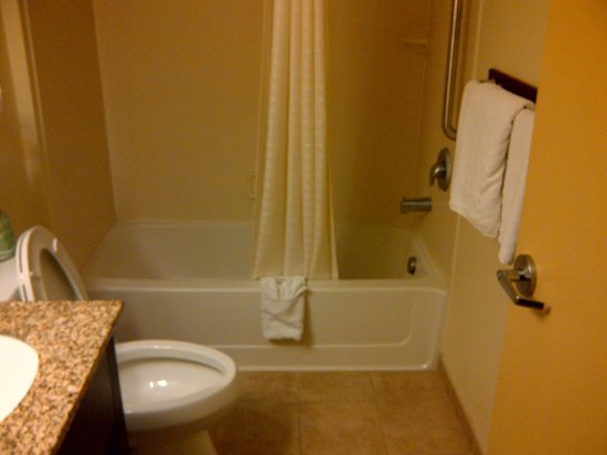 Quality Inn Flamingo: Tub