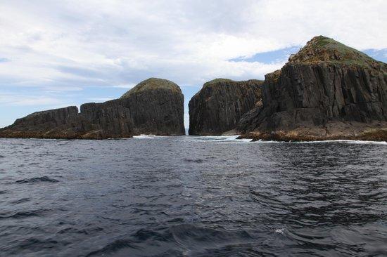 Bruny Wildlife Adventure:                                     rocks