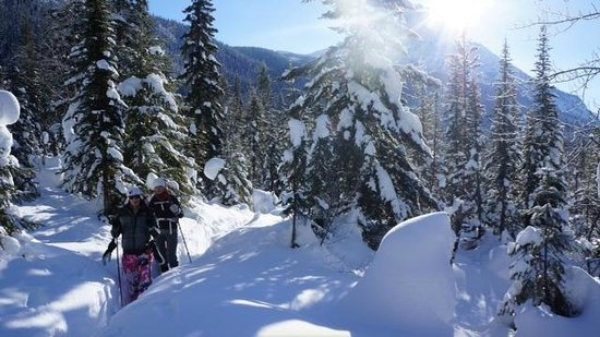 Emerald Lake Lodge: we snowshoed through this and blazed a trail. You can also stick to the well groomed trails if