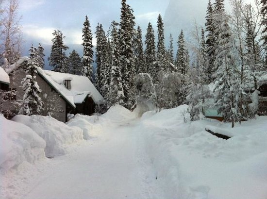 Emerald Lake Lodge: A snowy view of a cabin opposite the hot tub area