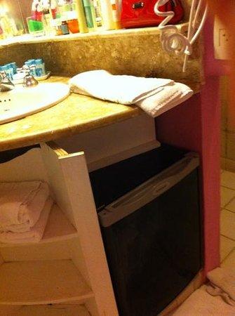 Club Med Rio Das Pedras: frigobar no banheiro com móvel adaptado sem acabamento