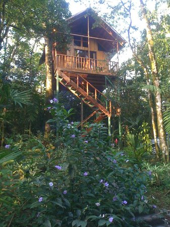 Tree Houses Hotel Costa Rica: Our tree house.