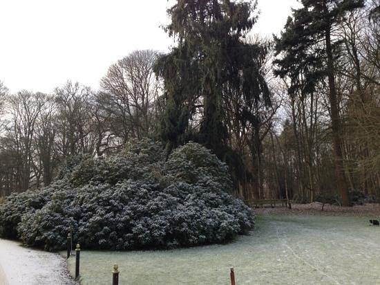 Ravenwood Hall Country Hotel: The grounds in Winter