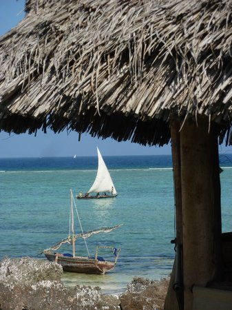 Green and Blue Ocean Lodge: Blick vom Pool zum Strand 