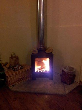 Forest Holidays Strathyre, Scotland: Wood burning stove