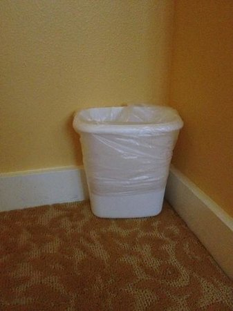 Hilton Grand Vacations at Hilton Hawaiian Village: $1 store trash can