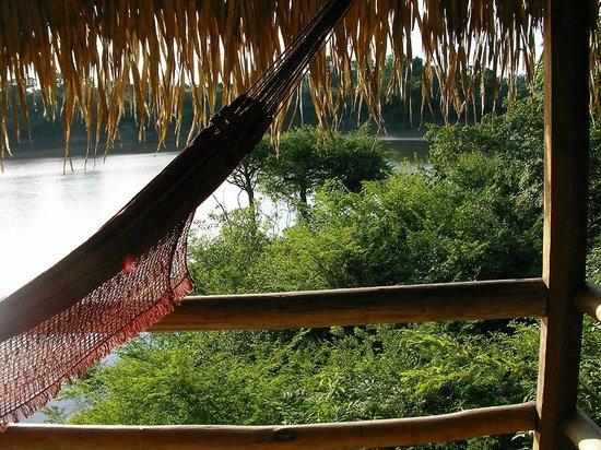 Juma Amazon Lodge: View from a lake view bungalow.