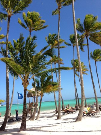 Barcelo Bavaro Beach - Adults Only: Plage Hotel