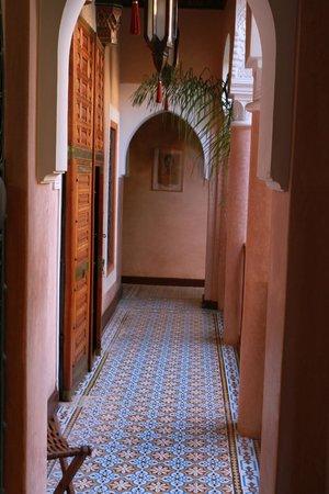 Riad Monika: Parti comuni