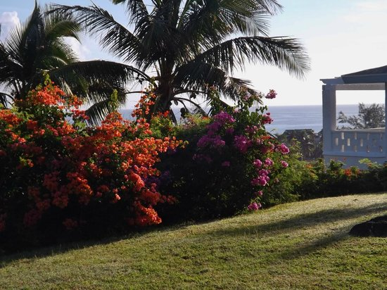 Stella Maris Resort Club : walking to the clubhouse