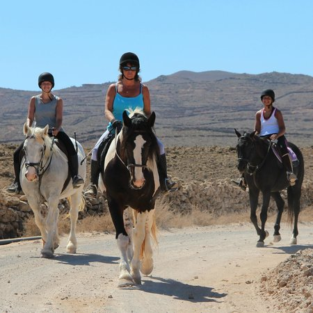 Finca Julie Horse Riding: Excursion in Hills of Villaverde