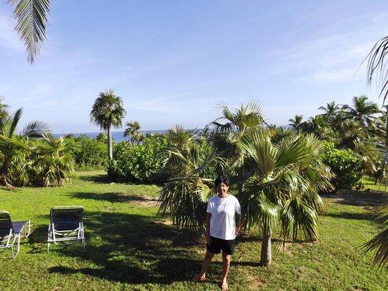 Stella Maris Resort Club : view from the cottage
