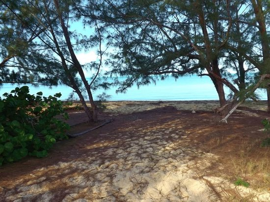 Stella Maris Resort Club: beach