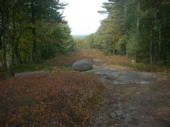 America's Stonehenge: More standing stones