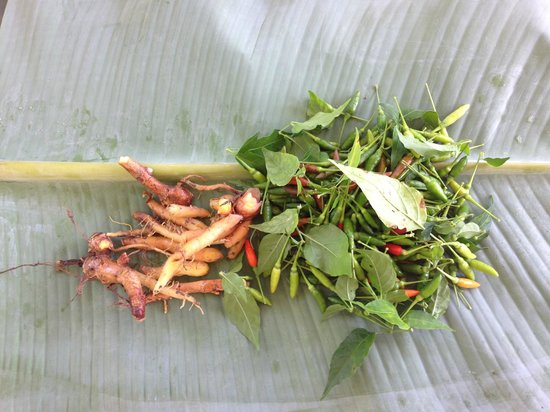 Mai Siam Resort: Ginseng Roots and Chilies :)