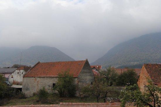 Pension Gradina Ursului: utsikt från balkongen