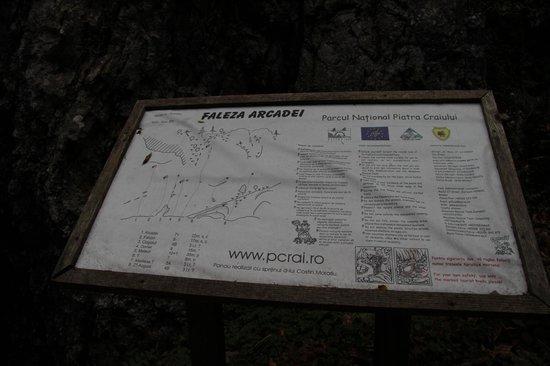 Pension Gradina Ursului: klätterställe några kilometer från zarnesti