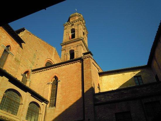 Il Chiostro del Carmine: Foto dal chiostro