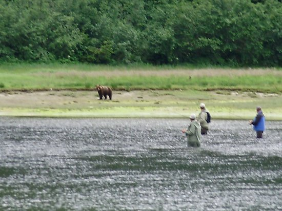 Glacier Bay's Bear Track Inn: Fishing with Bears