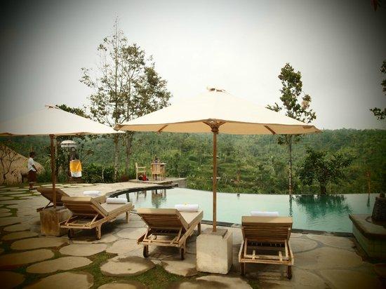 Puri Sebatu Resort: La vue de la piscine