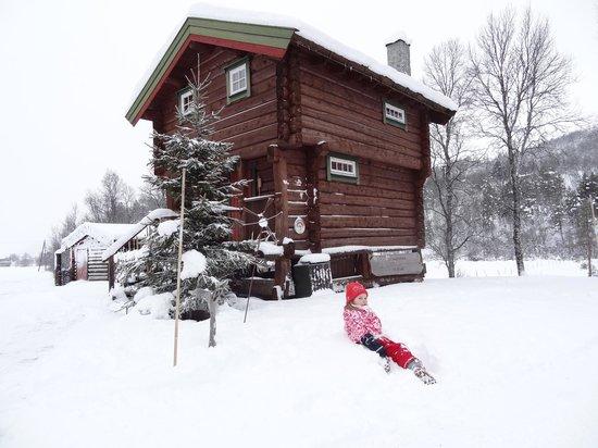 Rondane Gjestegard: beautiful log cabin available to rent
