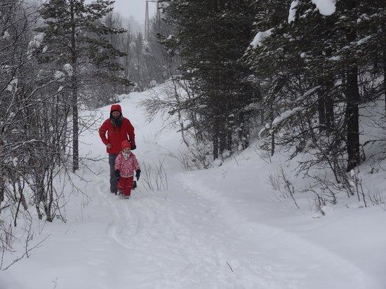 Rondane Gjestegard: surroundings