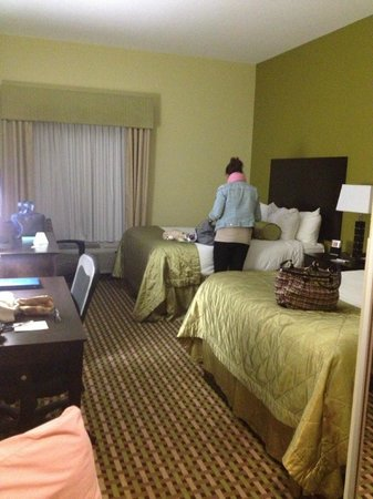 Best Western Plus Brunswick Inn & Suites: Room (Very Large)